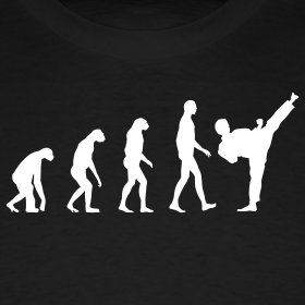 evolution-karate_design