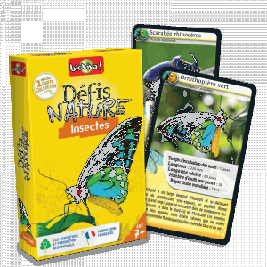 defis-nature-insectes.jpg