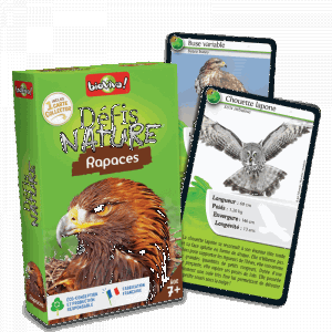 defis-nature-rapaces.jpg
