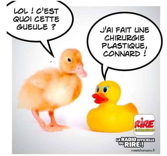 Chirurgie canard