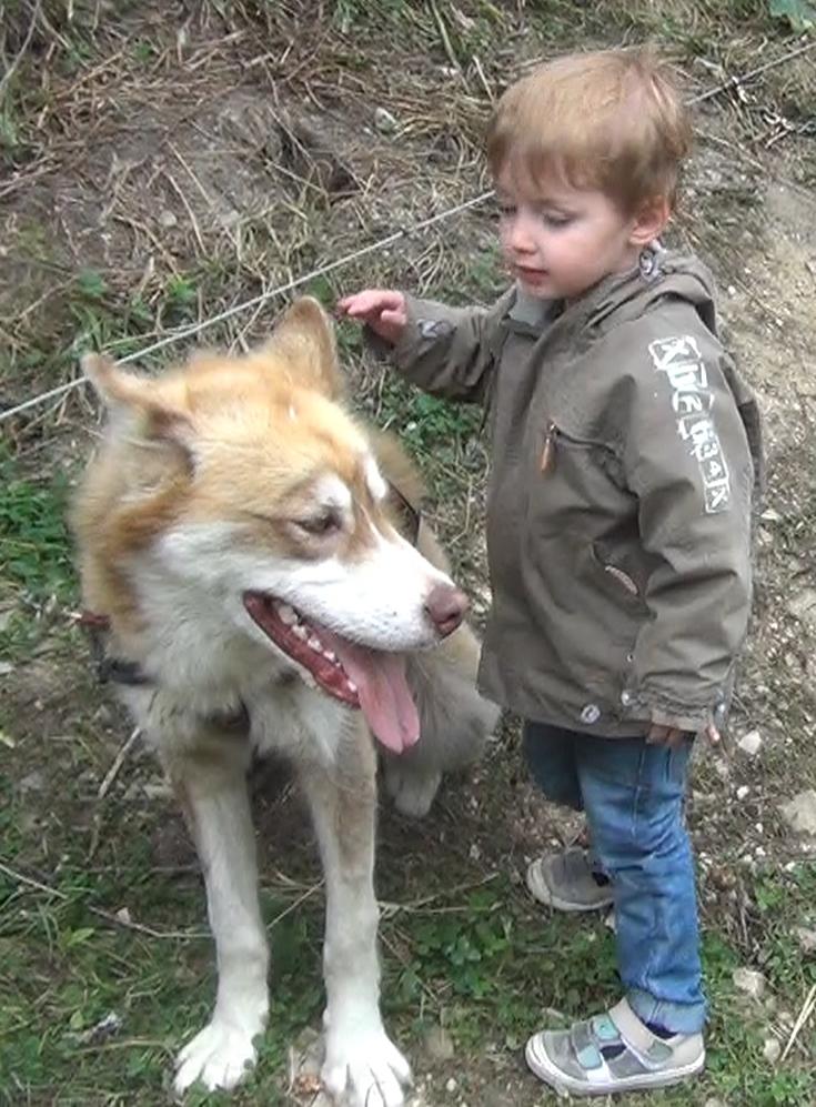 Alexandre avec un chien (2)